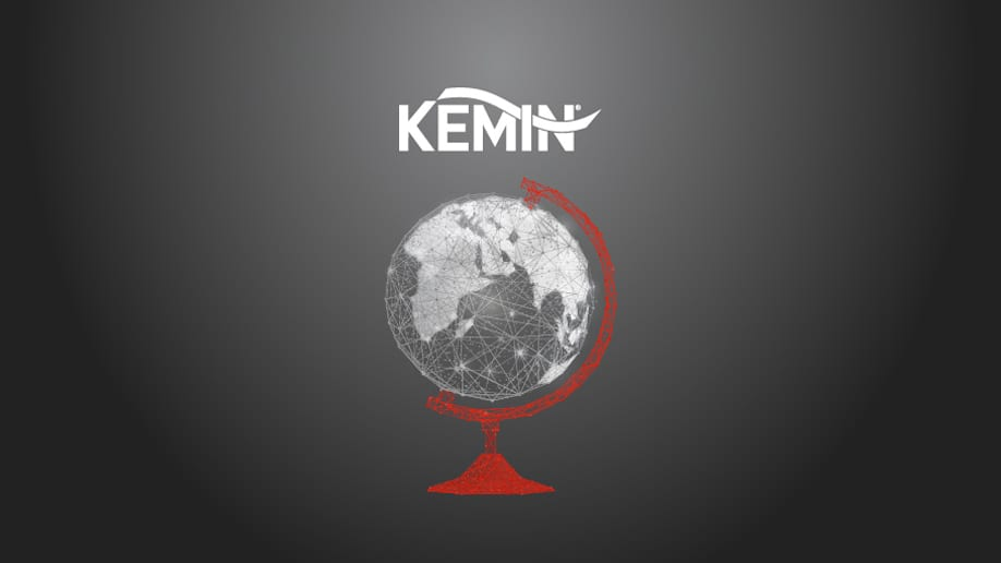 Red and white abstract globe image with Kemin Logo